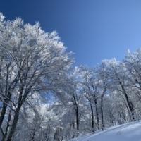 雪あってよかったー